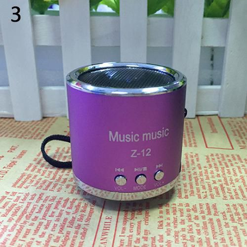 Portable Mini Speaker Amplifier FM Radio USB Micro SD TF Card MP3 Player