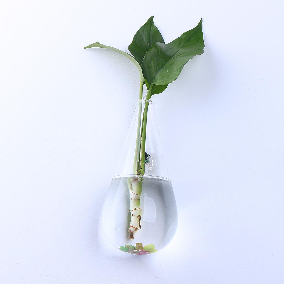 Irregular Wall Hanging Glass Planter Air Plant Terrarium Flower Pots Vase Garden Buy Irregular Wall Hanging Glass Planter Air Plant Terrarium Flower Pots Vase Garden Online At Low Price Snapdeal
