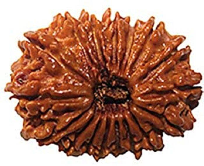 9STARS GALLERY Nepal 18 Mukhi  Original Quality Rudraksha With Silver Pendant  By Lab Certified