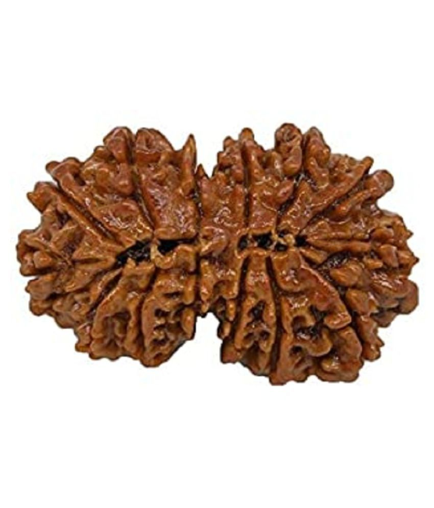 9STARS GALLERY Gauri Shankar Nepal Rudraksha with Silver Pendant Natural High Quality Lab Certified Beed