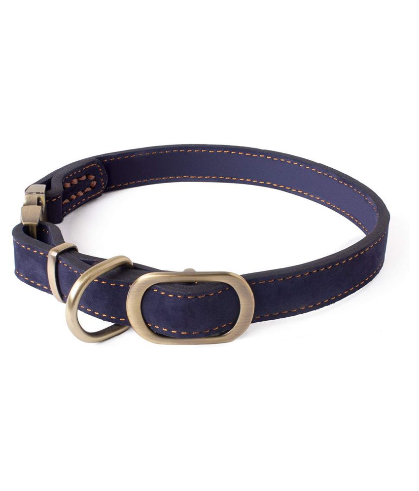 CORE PET WORKS IRIS COLLAR NAVY BLUE : DOG COLLAR, DOG ACCESSORIES, PREMIUM COLLAR FOR Dogs (M)
