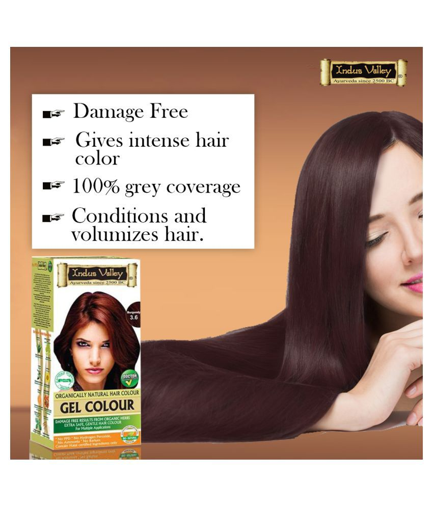Indus Valley Permanent Hair Color Burgundy 220 mL