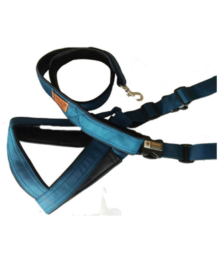 Smart Dog Harness Blue Color With Leash 1 Inch