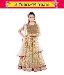 e629134c374 Girls Lehenga Cholis  Buy Girls Lehenga Cholis Online at Best Prices ...