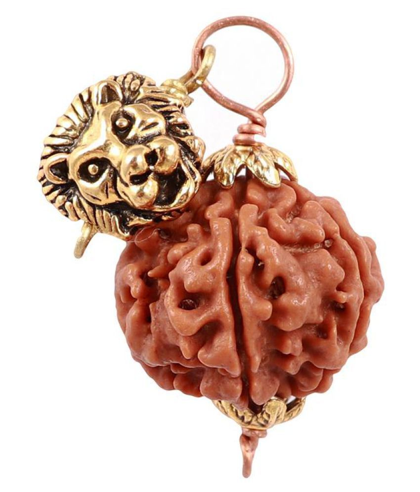 Rudra Blessings 5 Mukhi Rudraksha from Nepal with Lucky Charm Lion