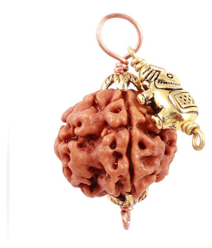 Rudra Blessings 5 Mukhi Rudraksha from Nepal with Lucky Charm Elephant