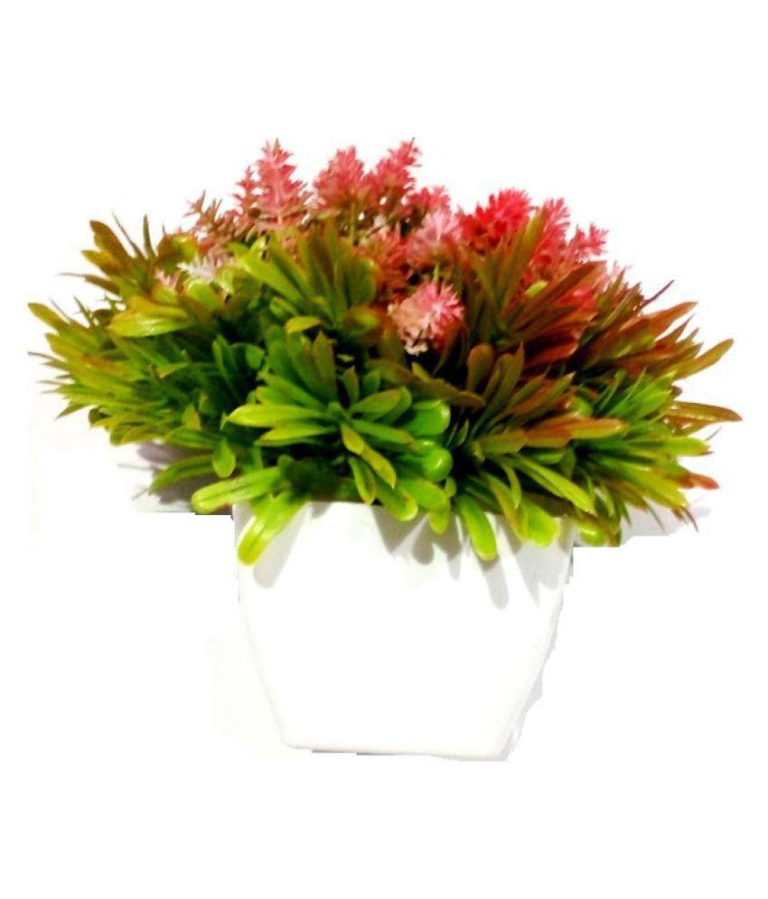 Green plant indoor Artificial Small Bonsai Plants Multicolour Bonsai Plastic - Pack of 1