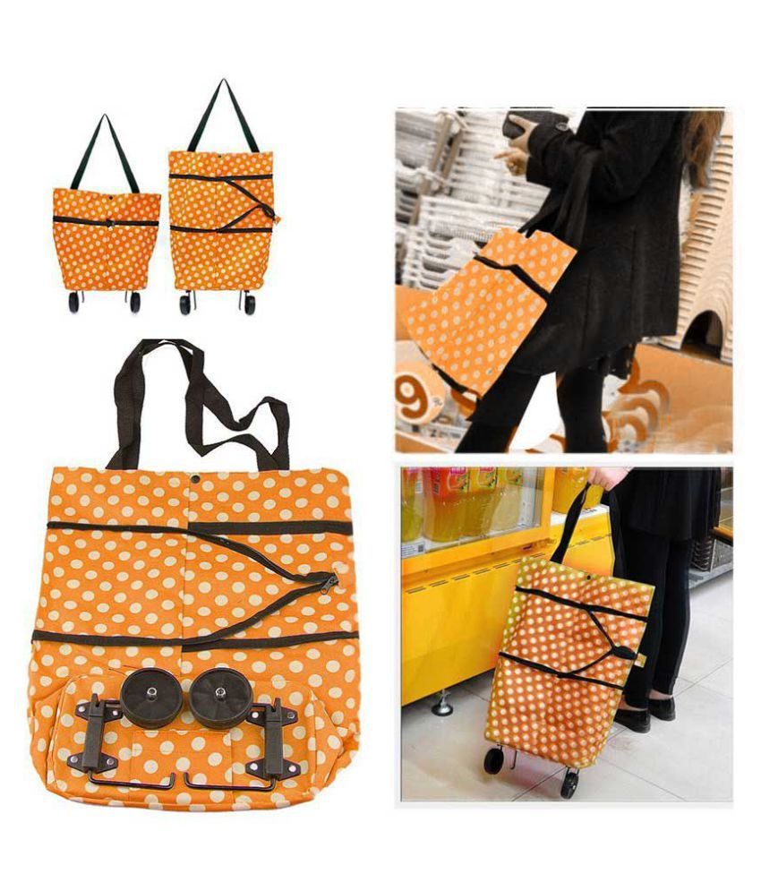 Genric Fabric Storage Bag & Trunk
