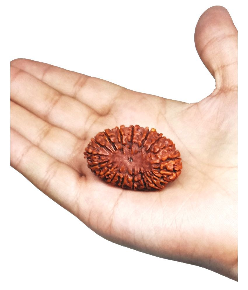 Unicop 20 Mukhi Lord Vishnu Blessed Original And Natural Wooden Bead Pandent For Man/ Women