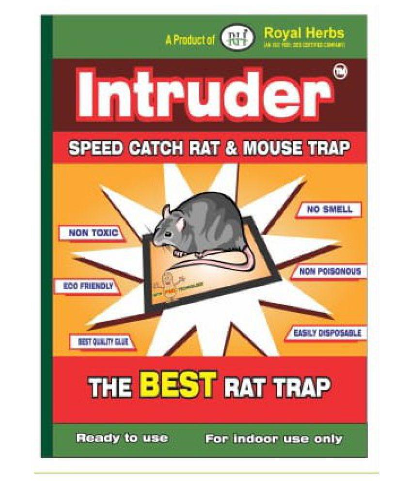 Intruder Rat & Mouse Trap Small