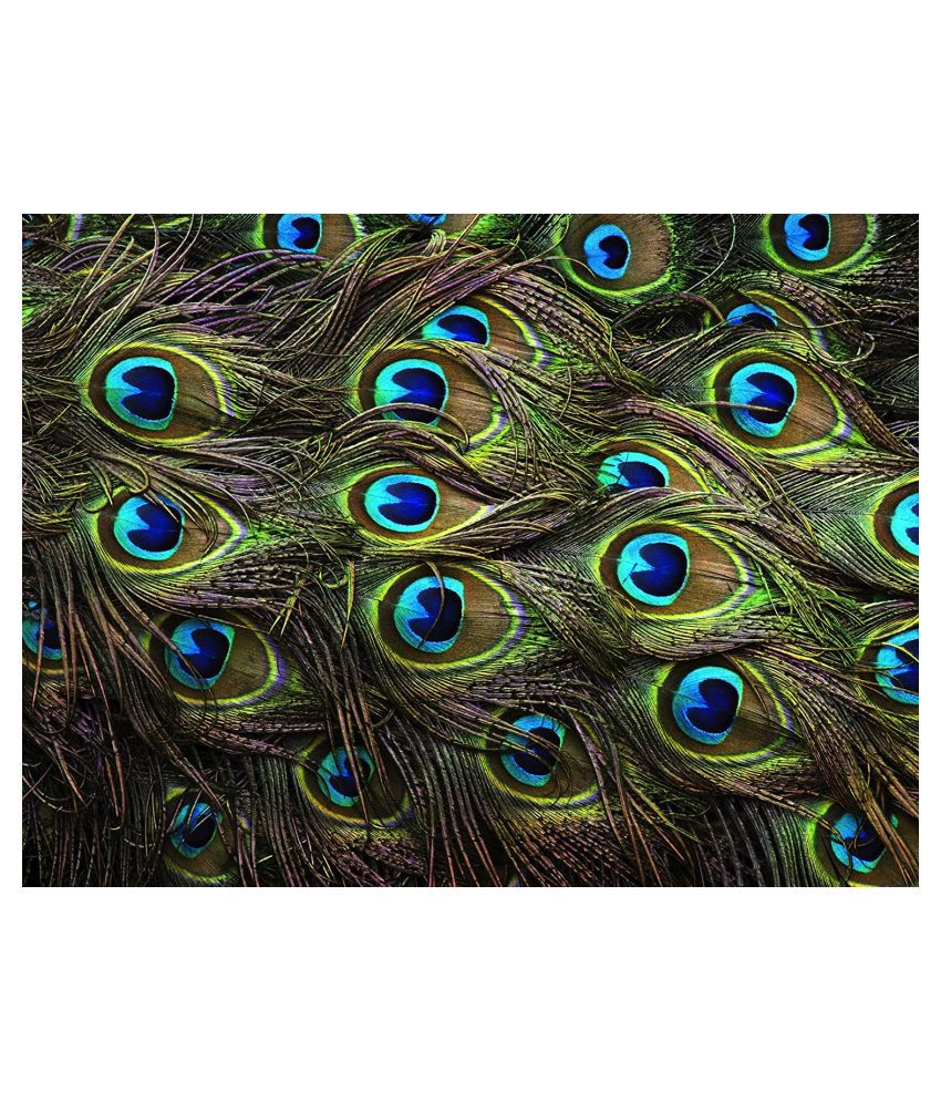 Urancia® Big Size Best Quality Natural Peacock Feathers 10piece 40inch for Pooja