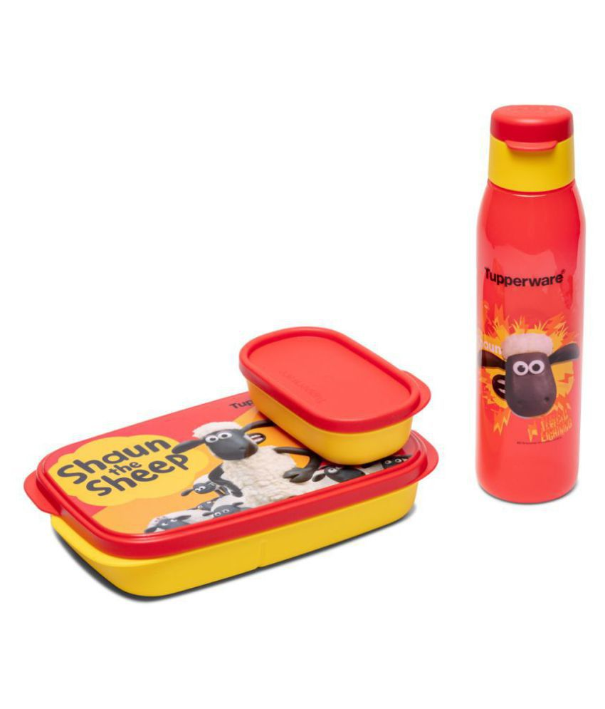 Tupperware Assorted Lunch Box