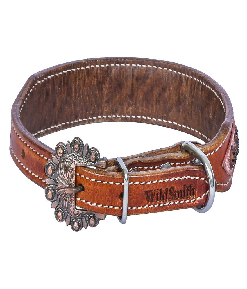 Wild Smith Geniune Leather Dog Collar with Leather Inlay Accented With Copper Finish Star Burst Metal Studds