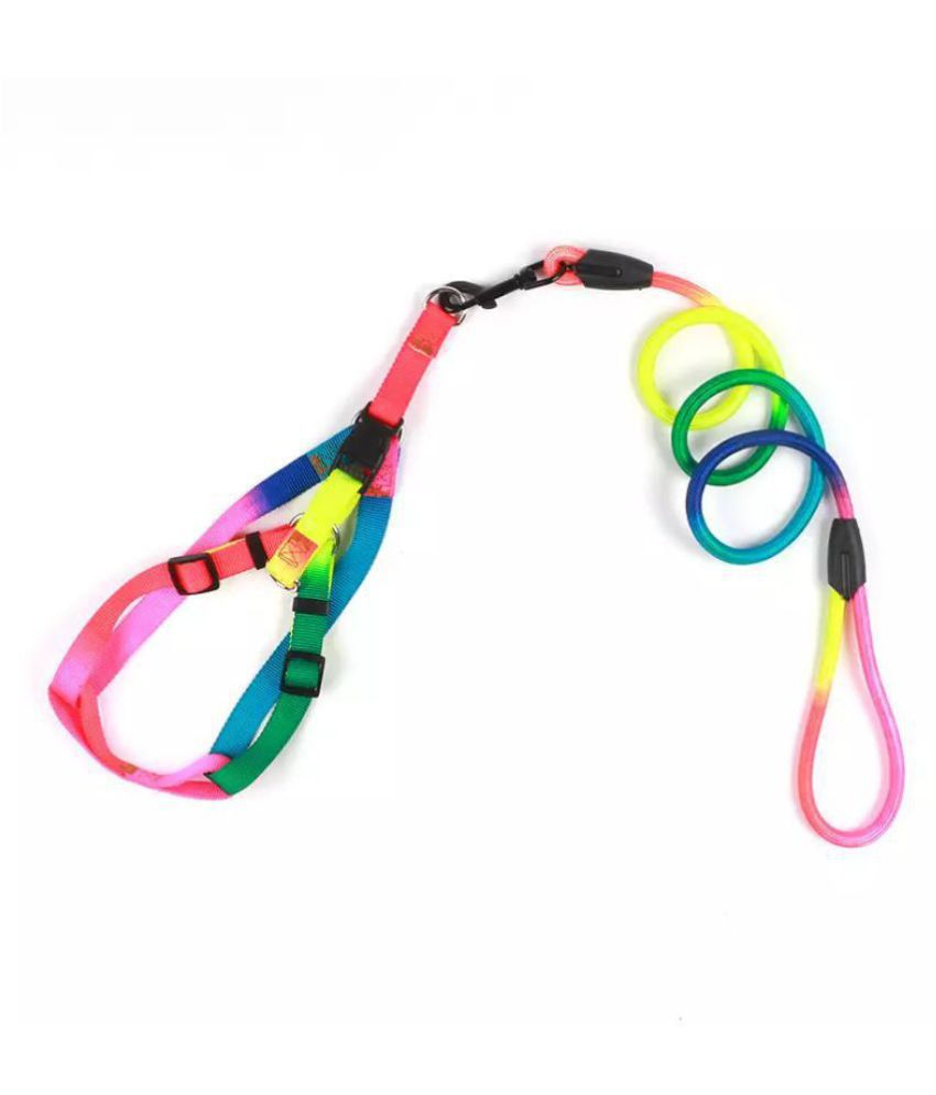 KUTKUT Durable Nylon Colourful Rainbow  Adjustable Harness and Round Traction Leash Set for XL Size Dogs.