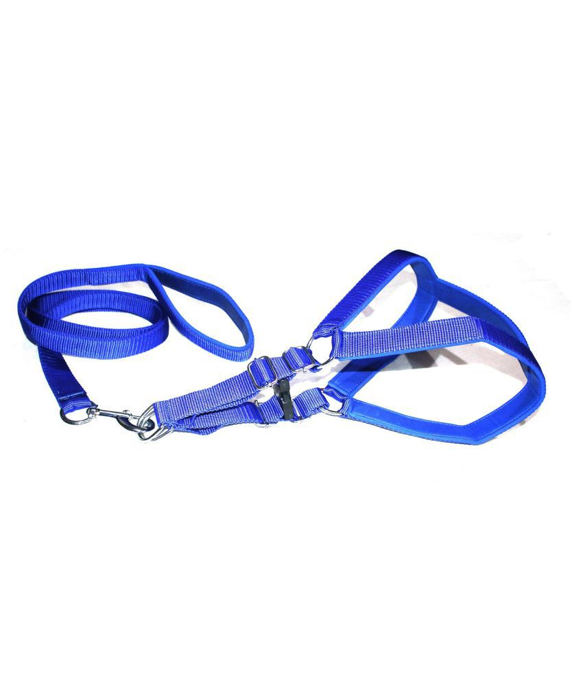 Dog Life Nylon Padded Blue Adjustable Dog Harness & Leash Set 0.75 Inch For Small Size Pet (Chest Size : 20-25)