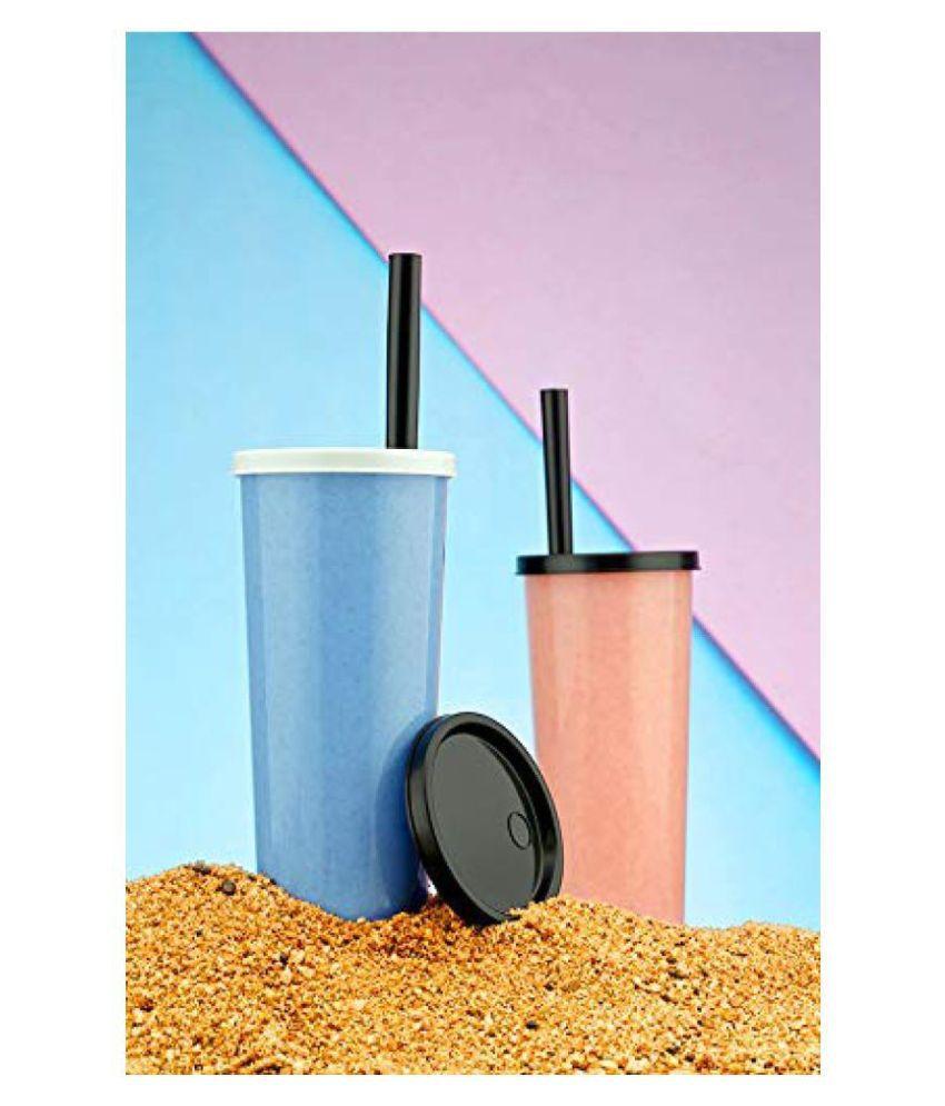 Accurate New Juice Bottle Multicolour 450 mL Plastic Fruit Infuser set of 1