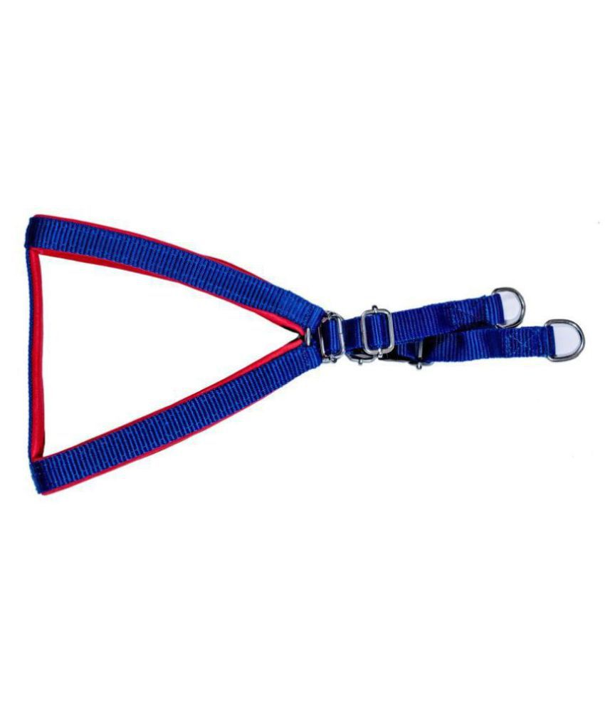 Tame Love Export Quality Padded Harness Chest Belt for Puppies (Blue color - 0.75 Inch)
