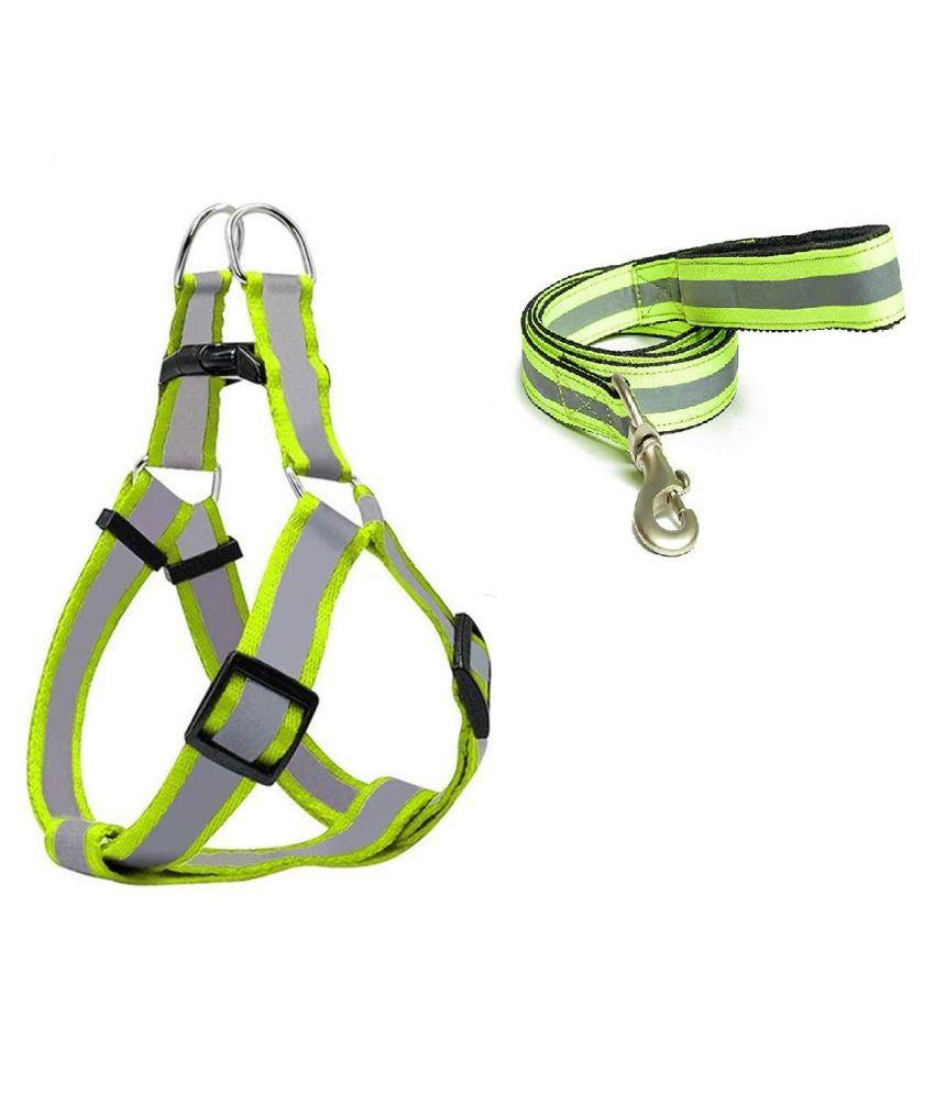Emily Pets Adjustable Nylon Cat Harness with Leash Puppy Pet Harness Strap Collar Lead Leash