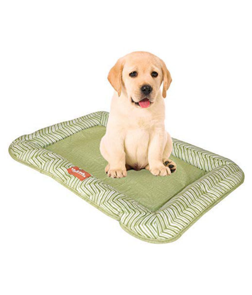 Emily Pets Movable Winter Warm cat and Dog House  pet Bed for Cats and Dogs Green