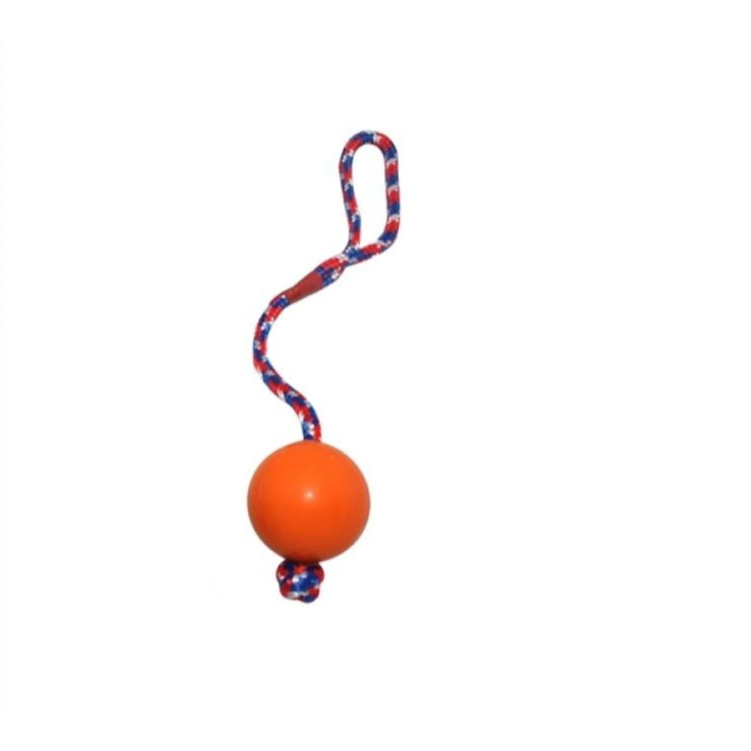 Emily Pets Solid Rubber Ball with Multicolor Rope Dog chew